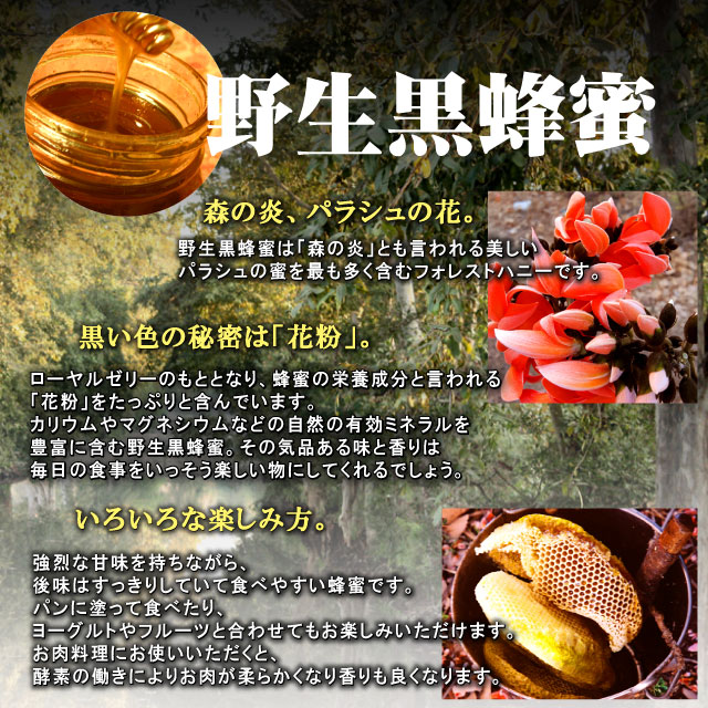 野生黒蜂蜜説明7